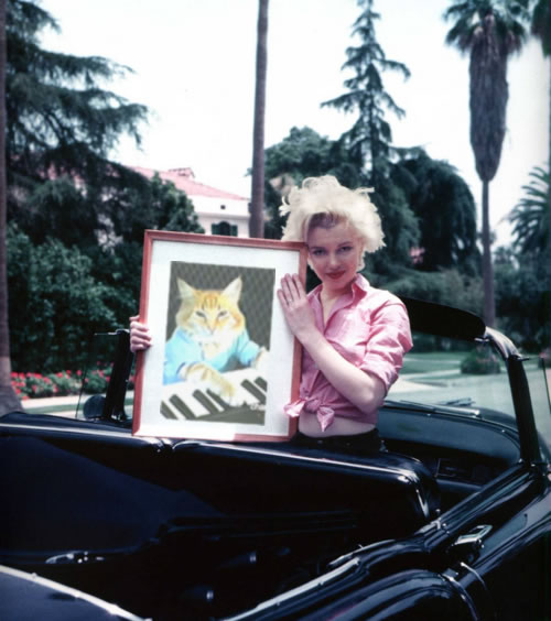 Marilyn Monroe holds a picture of Keyboard Cat