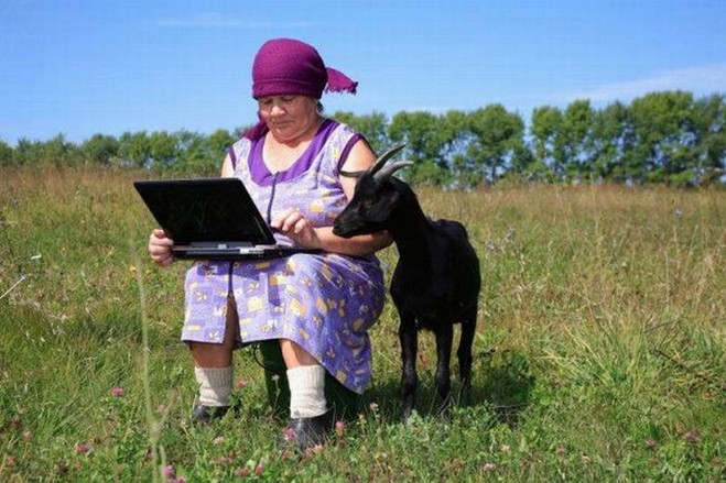Woman and goat look at laptop