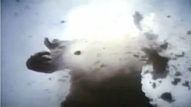 Pulgasari explodes