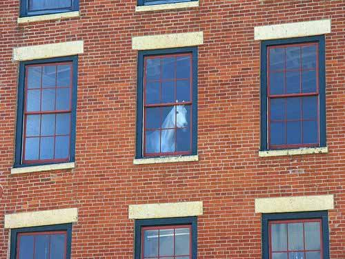 Horse in a second floor window