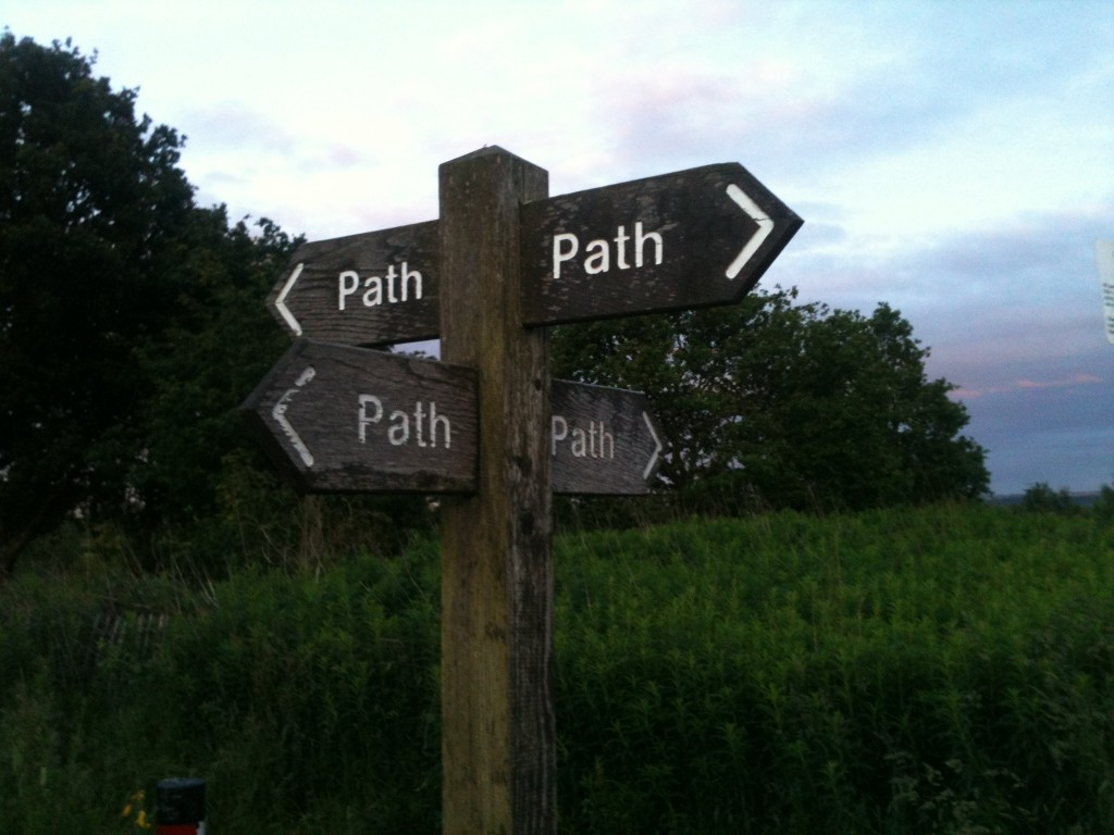 "Road signs; in every direction they say ""path"""