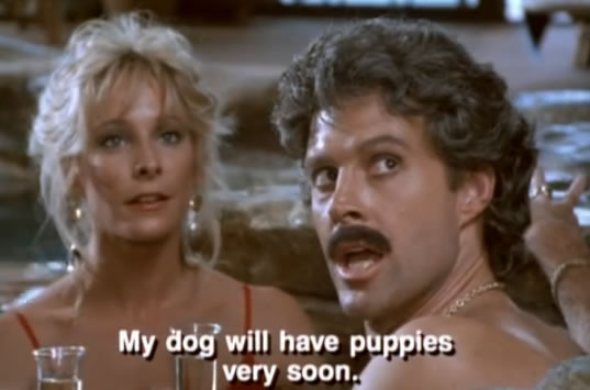 Murdock speaks Italian, saying 'my dog will have puppies very soon'