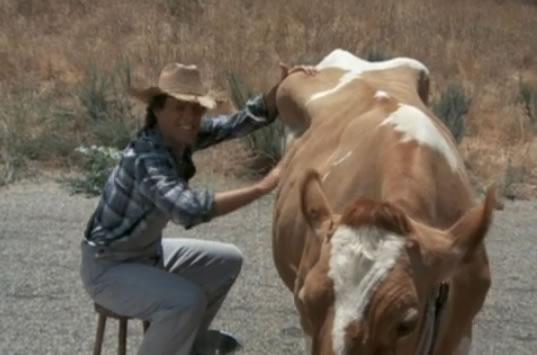 Murdock milking Bessie