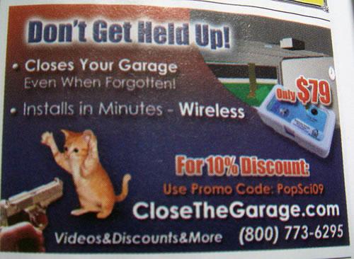 Advertisement: cat gets held up