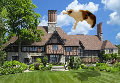 Cat flying over Mel Gibson's house