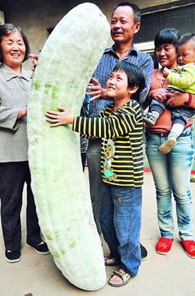 Kid holds up giant cucumber