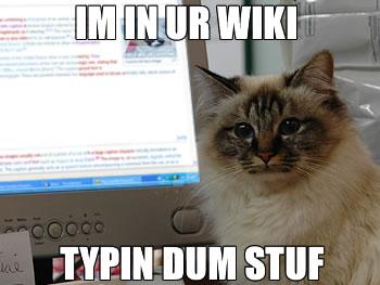 I'm in ur wiki typin dum stuf