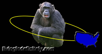 The U.S. orbiting a chimp