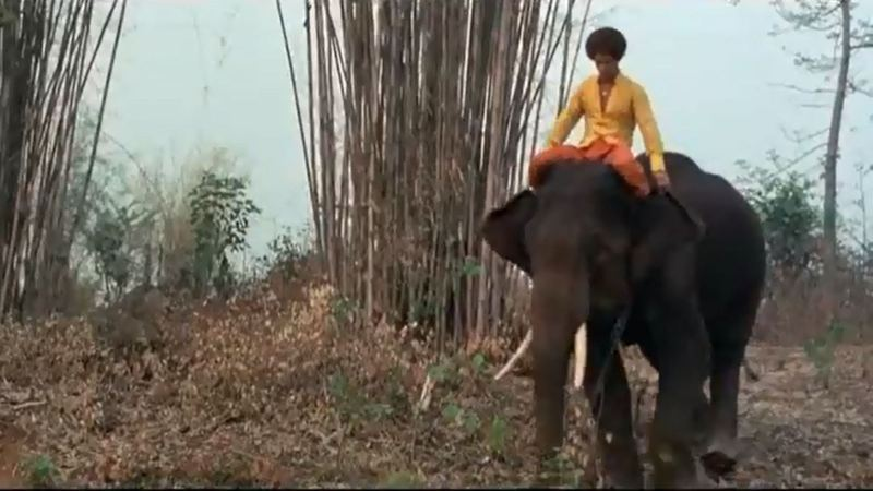 Jim Kelly on an elephant