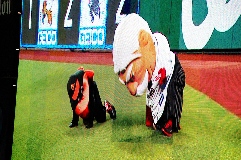 "Oriole Bird and ""Big Chief"" William Howard Taft get into a tussle during the Presidents Race at Nationals Ballpark. This wrestling match came just after Oriole Bird took down three other presidential mascots during the race; this naturally upset Taft"