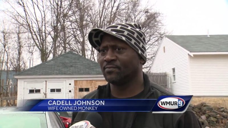 Cadell Johnson: Wife Owned Monkey