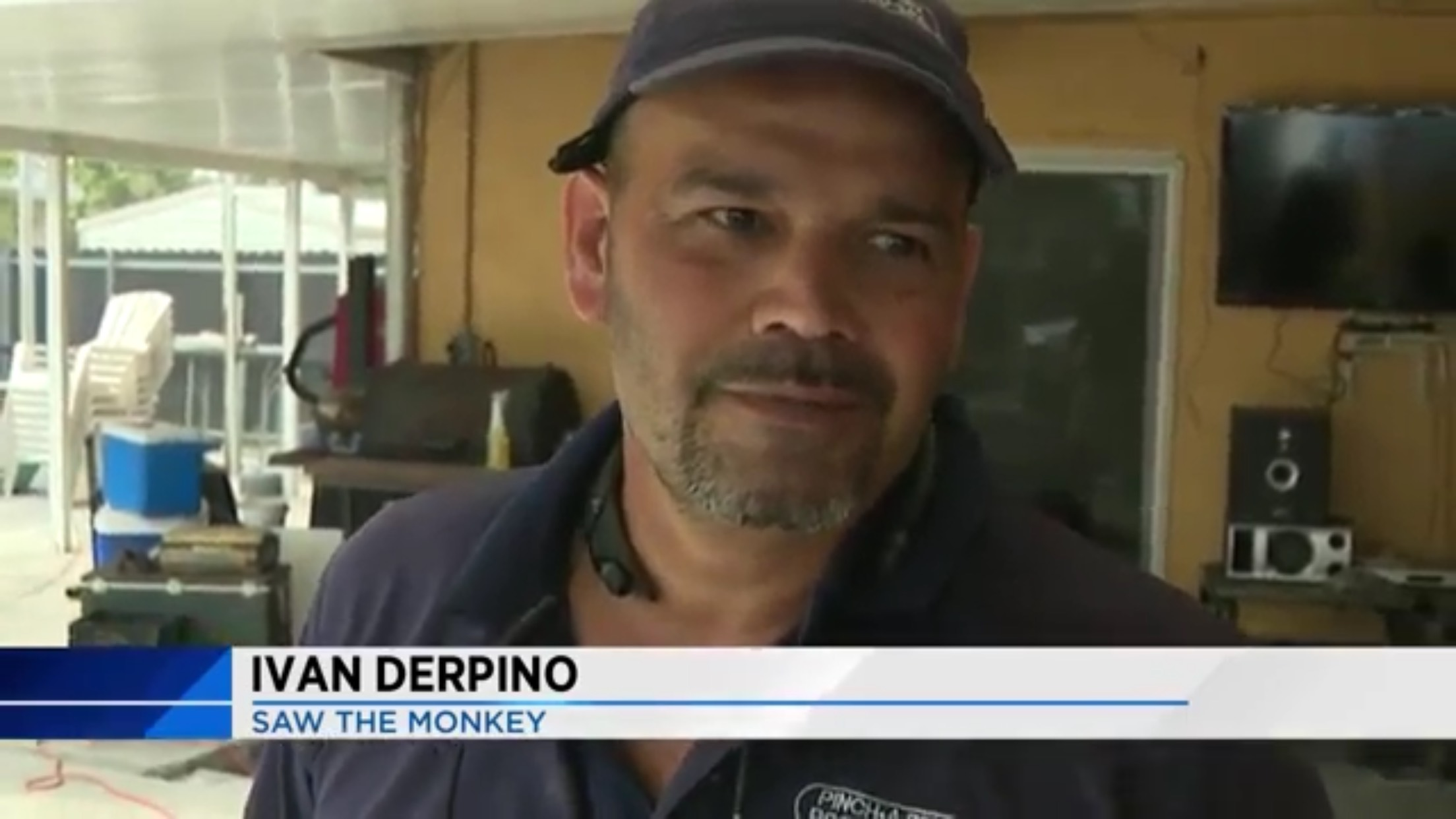 Ivan Derpino: Saw The Monkey