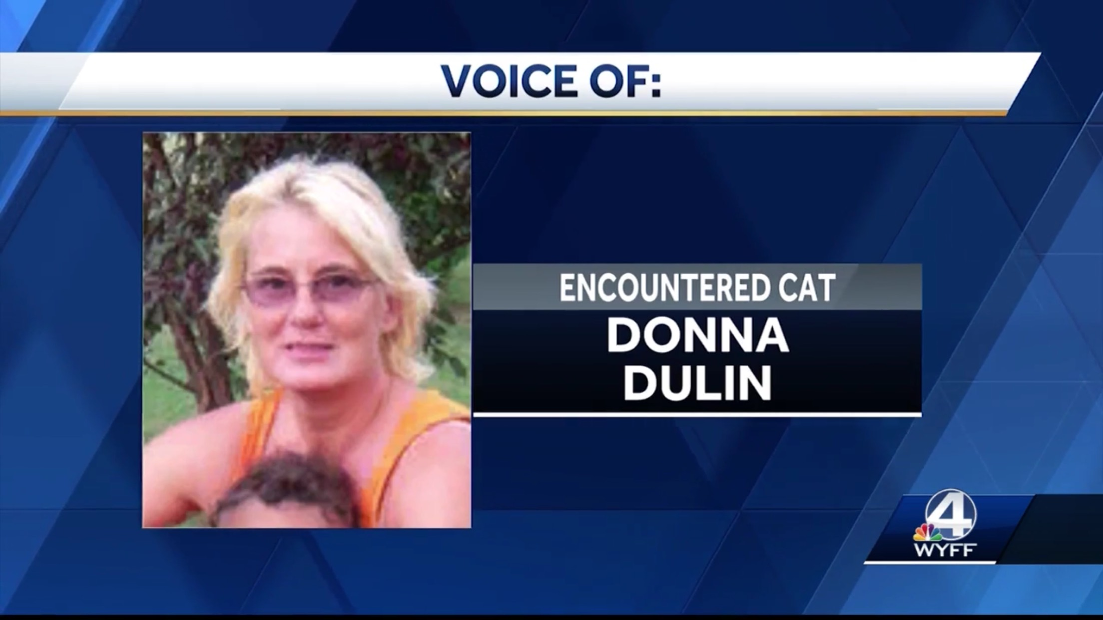 Donna Dulin: Encountered Cat