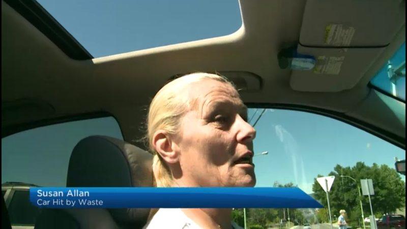 Susan Allan: Car Hit By Waste