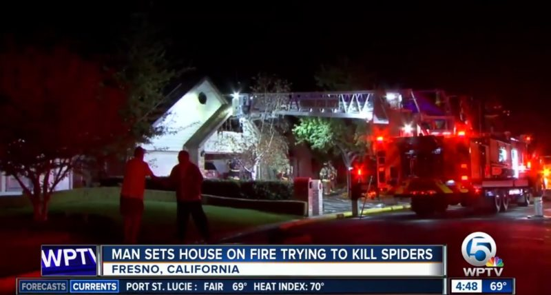 Man Sets House On Fire Trying To Kill Spiders