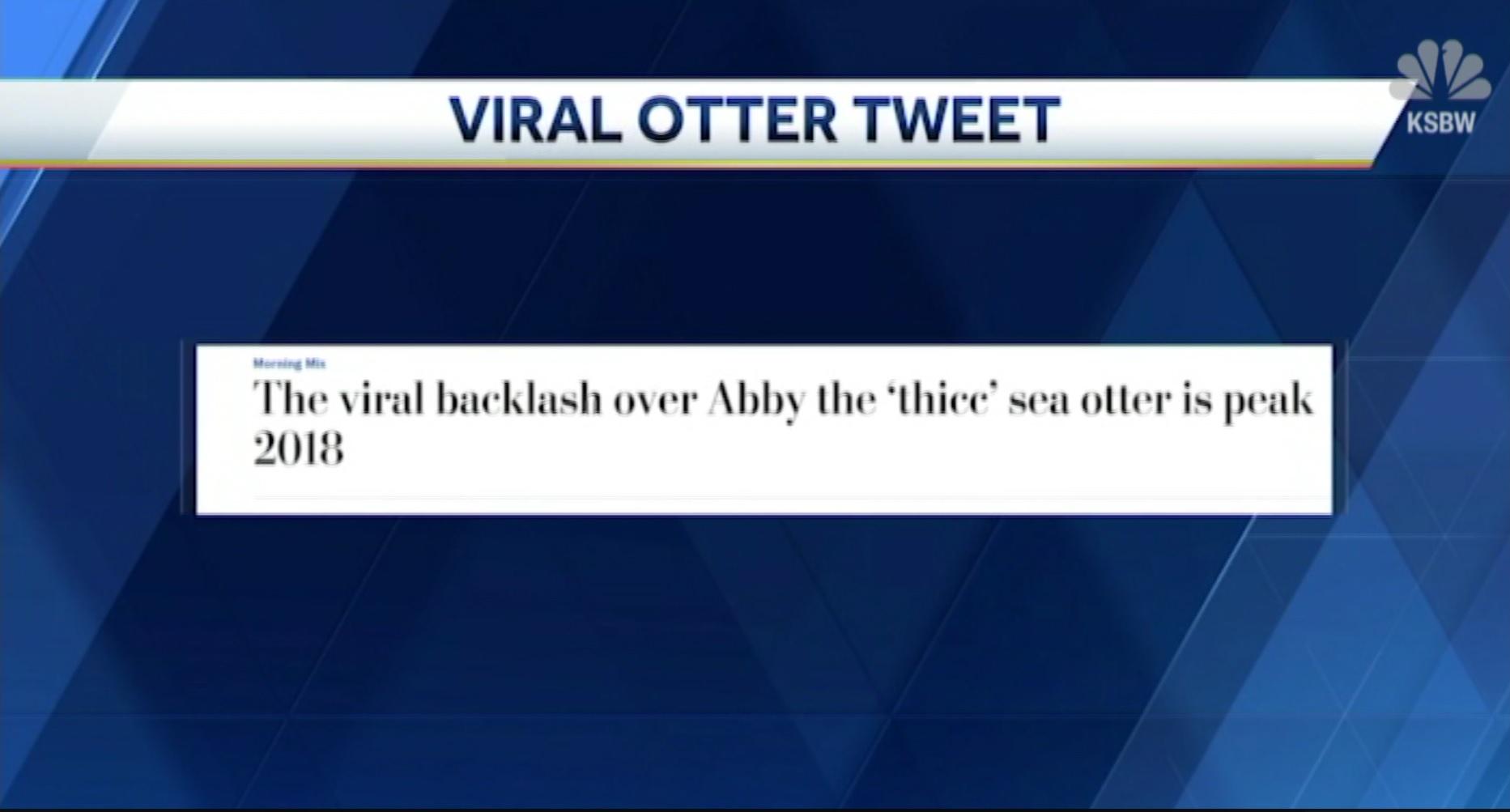 Viral Otter Tweet