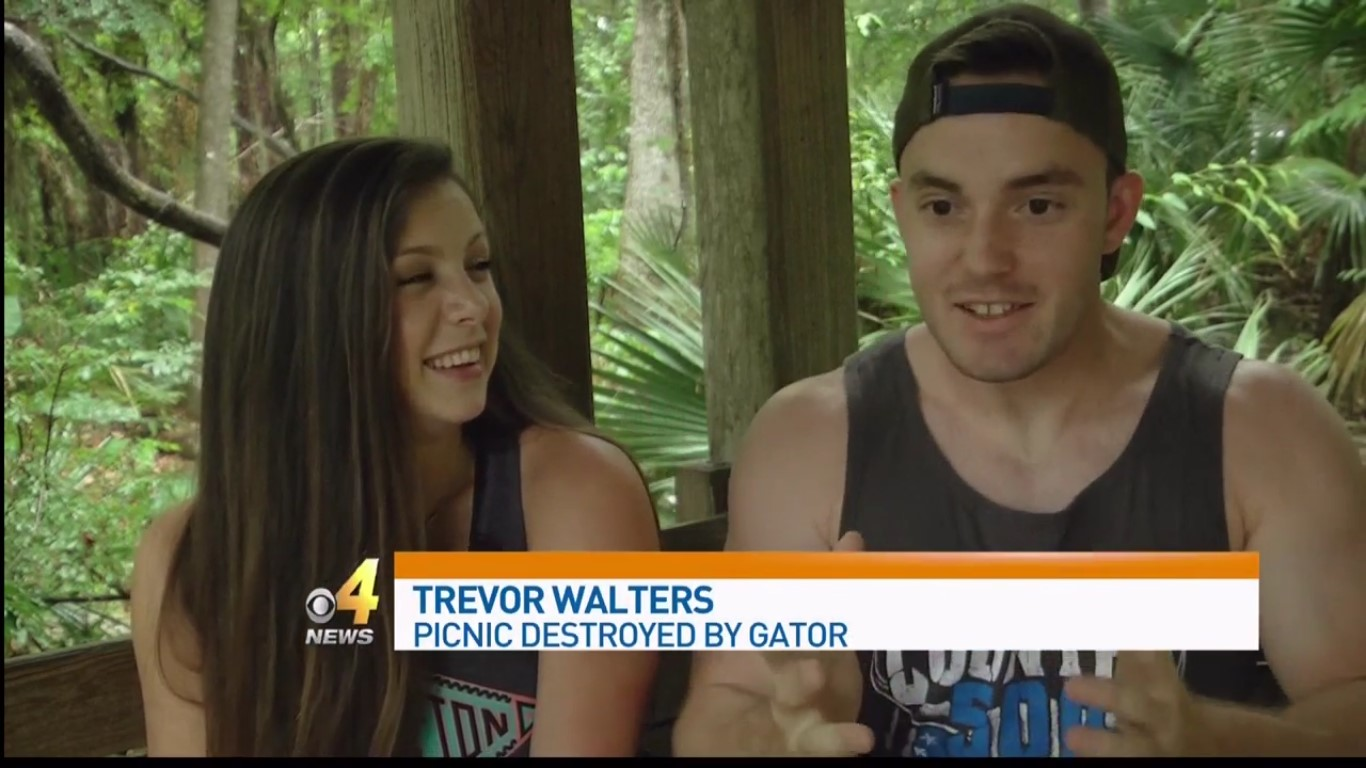 Trevor Walters: Picnic Destroyed By Gator