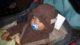 Sleepy baby boy in his bear costume