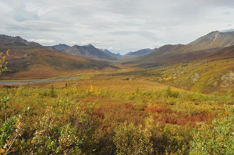 Yukon. (photo by Maja Milosevic via Flickr/CC https://flic.kr/p/yuFHPe)