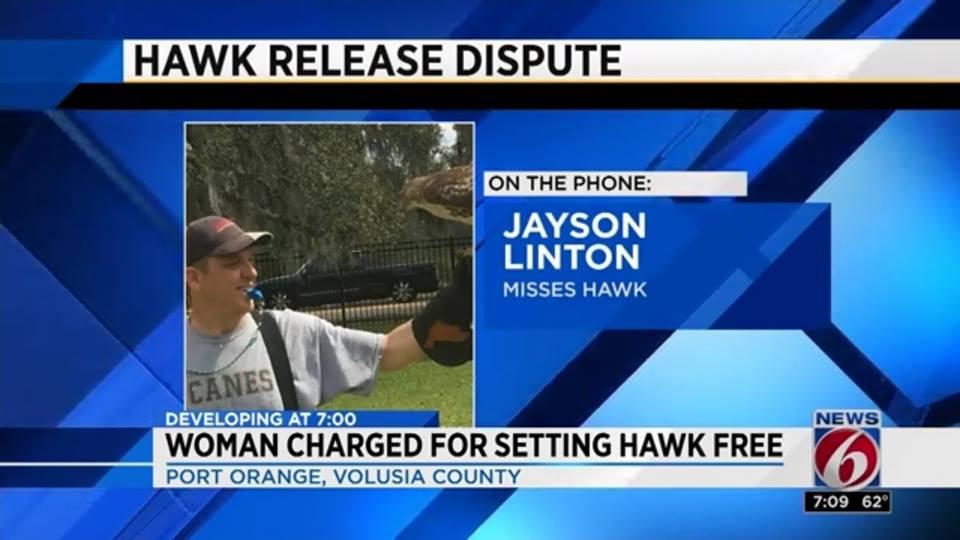 Jayson Linton: Misses Hawk