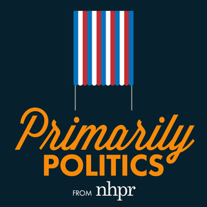Primarily Politics logo