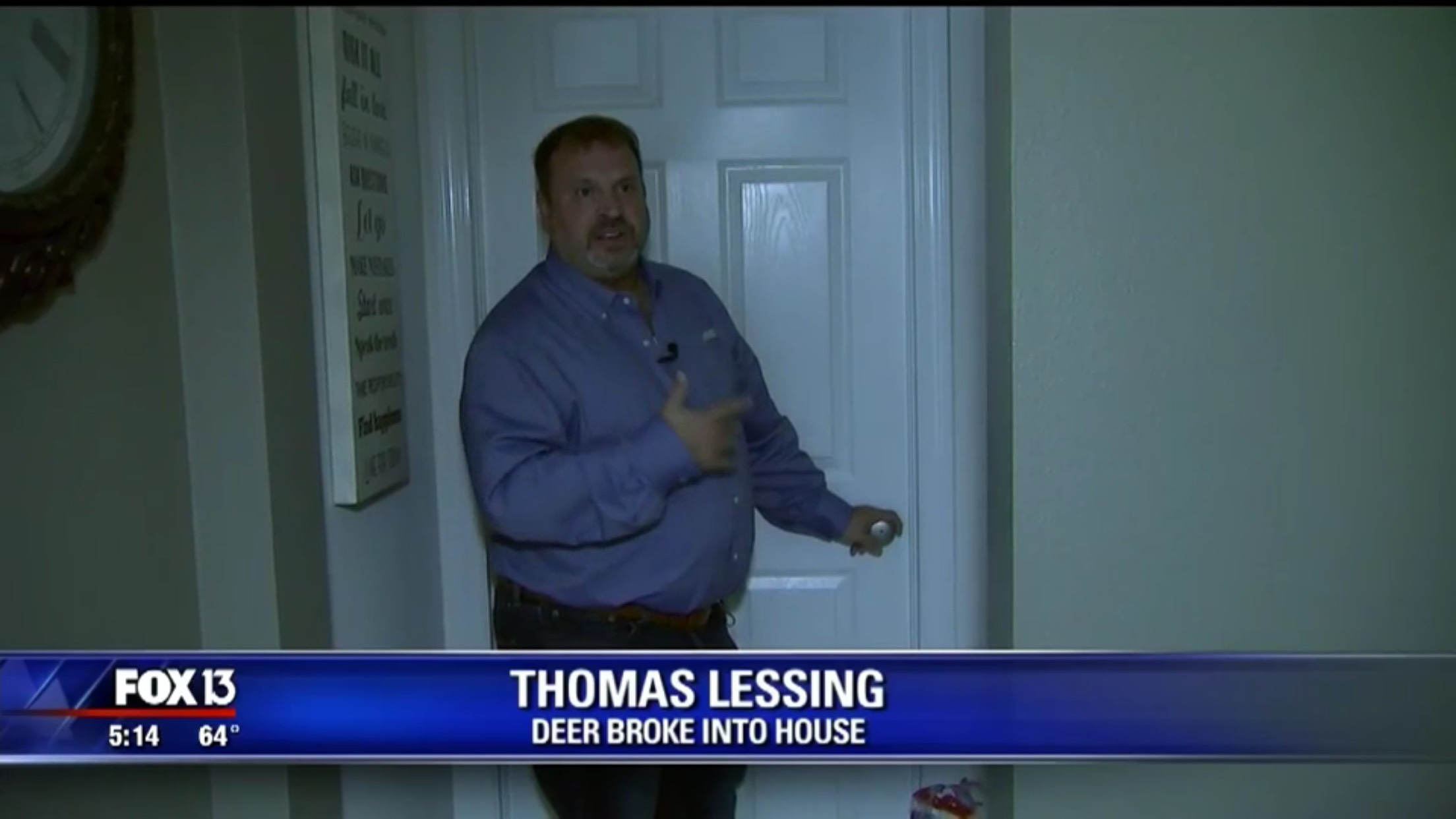 Thomas Lessing: Deer Broke Into House