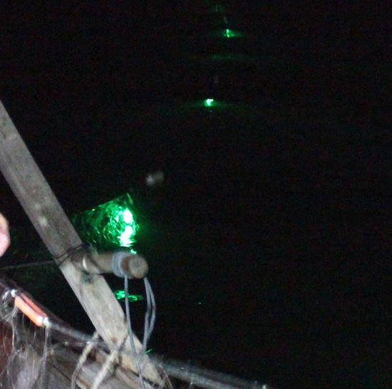 When illuminated by LED lights, nets create a visual cue that helps sea turtles avoid becoming entangled, while at the same time maintaining the target catch and catch value for the fishermen. Credit: NOAA PIFSC.
