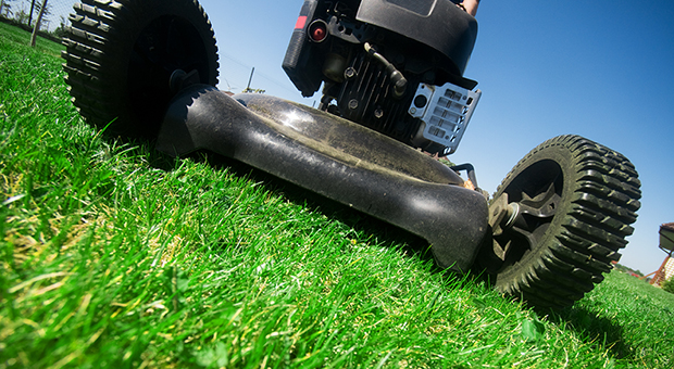 Ground-level close-up of a lawn mower in grass. (Photo by Penn State via Flickr/Creative Commons https://flic.kr/p/nJvGbG)