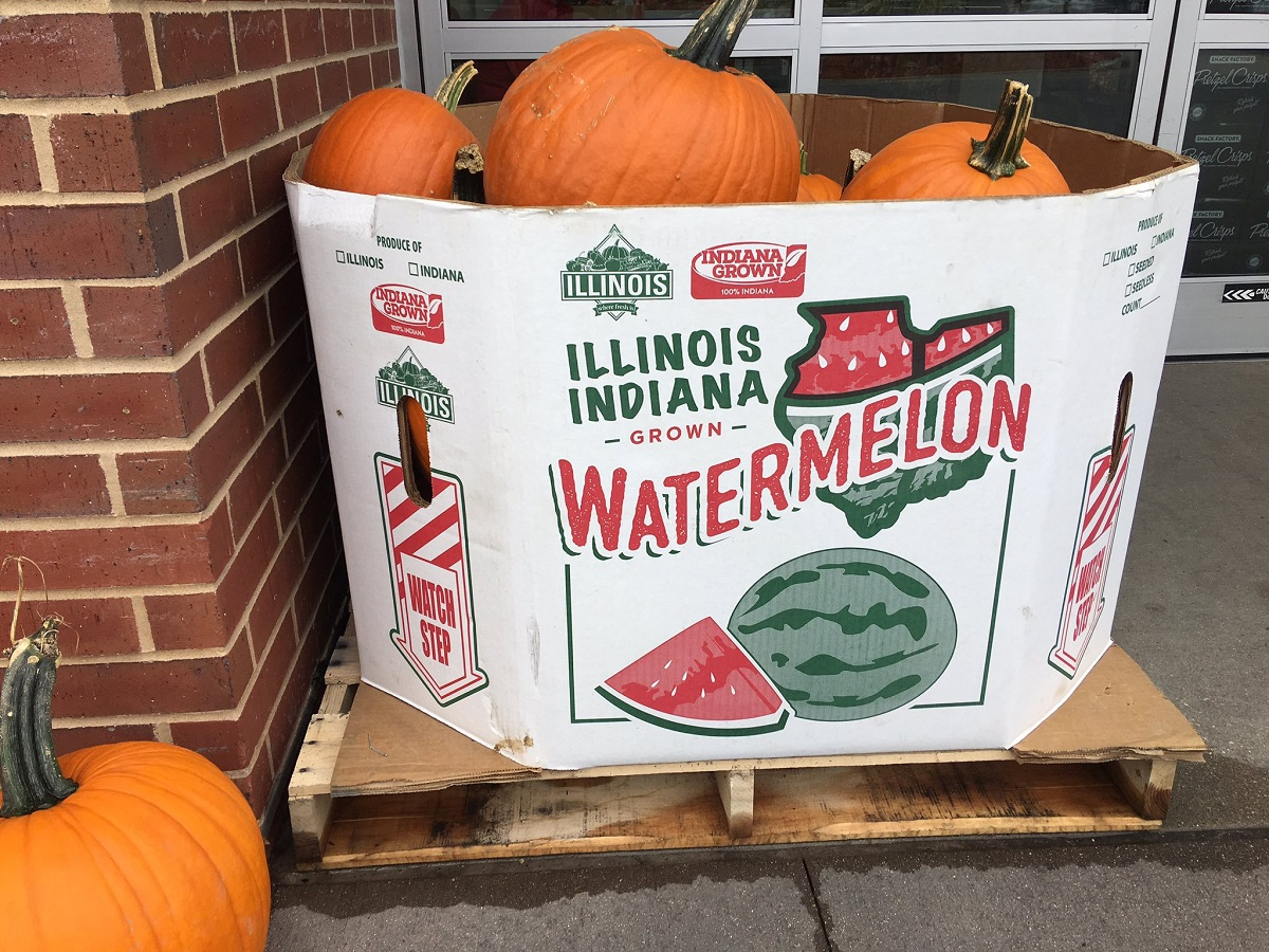 Pumpkins in a watermelon box