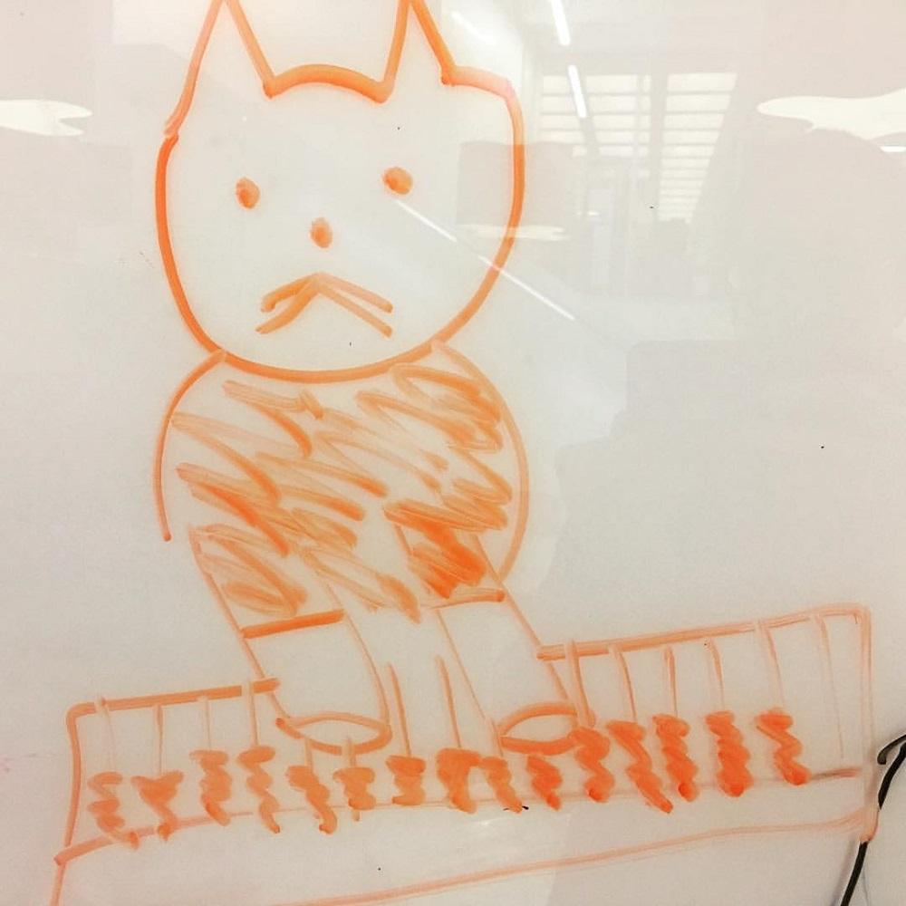 I drew Keyboard Cat on a dry-erase board with orange marker