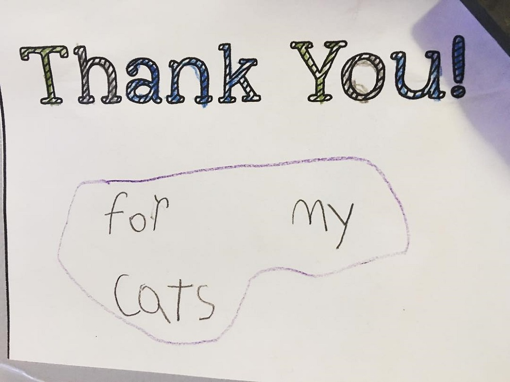 """Thank you for my cats"""