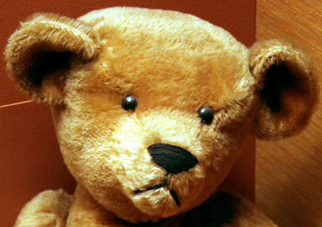 Close-up on the head of an original 1903 teddy bear, at the Smithsonian Museum of American History. (Photo by Tim Evanson via Flickr/Creative Commons https://flic.kr/p/c2ySdj)