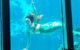 A Weeki Wachee Mermaid swims. (Photo by Steven Martin via Flickr/Creative Commons https://flic.kr/p/JLcbeP)