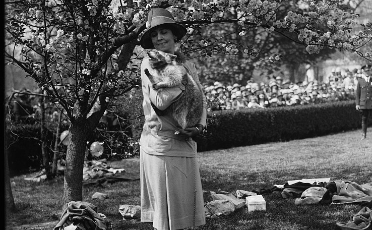 Grace Coolidge with Rebecca Raccoon. (Harris & Ewing photograph collection at Library of Congress Prints and Photographs Division https://www.loc.gov/resource/hec.34437/)