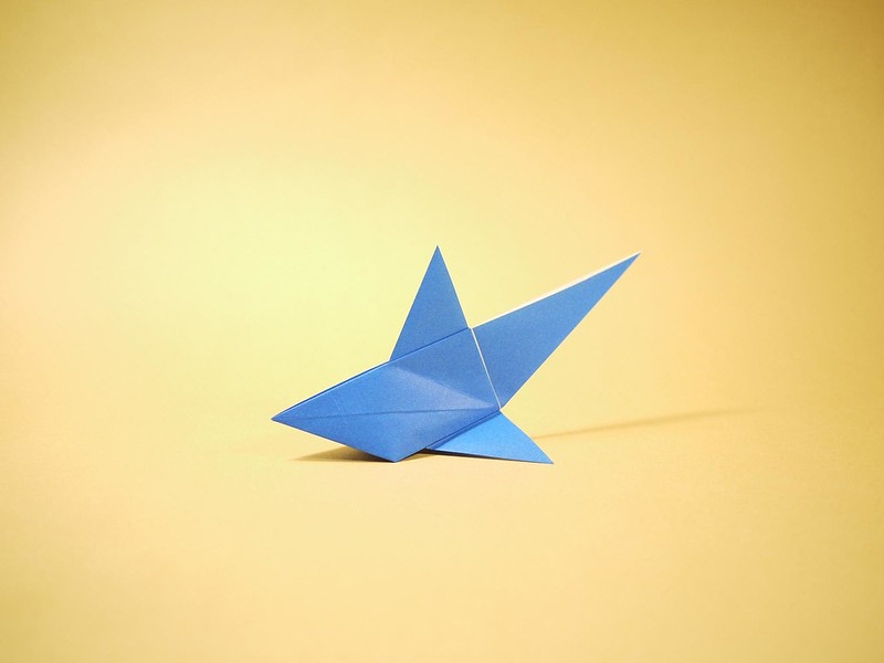 Origami shark (photo by yosuke muroya via Flickr/Creative Commons https://flic.kr/p/9RAQ2J)