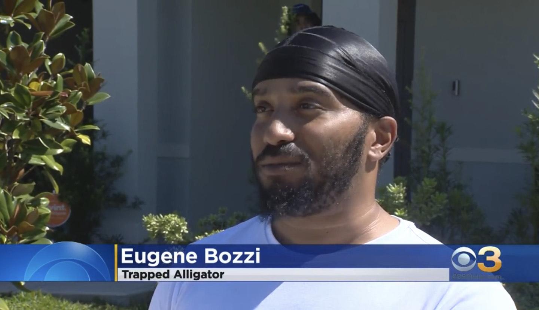 Eugene Bozzi: Trapped Alligator